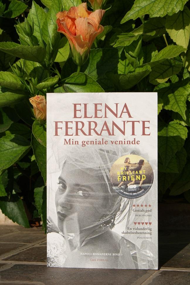"""Billede af Elena Ferrantes bog """"min geniale veninde""""."""