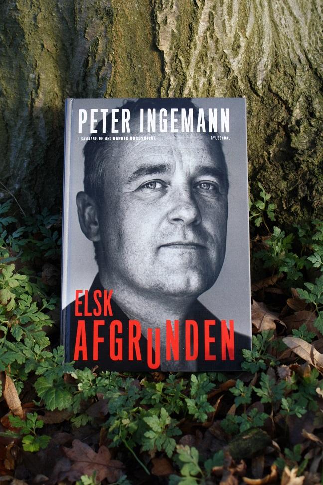 """Billede af Peter Ingemann og Henrik Nordskildes bog """"Elsk afgrunden""""."""